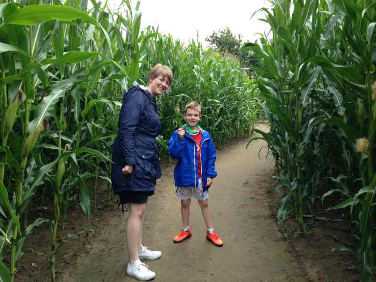 York Maze review